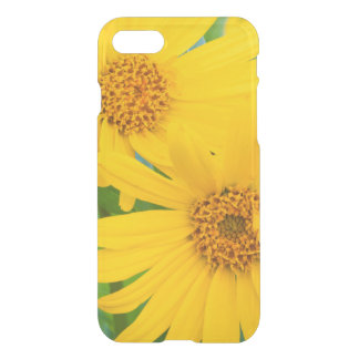 Wyoming, Sublette County, Close-up of two Arrow iPhone 7 Case