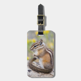 Wyoming, Sublette County, Least Chipmunk Luggage Tag