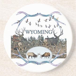 WYOMING wildlife Coaster