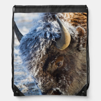 Wyoming, Yellowstone National Park, Frost Backpack