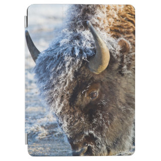 Wyoming, Yellowstone National Park, Frost iPad Air Cover