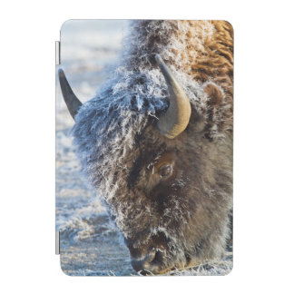 Wyoming, Yellowstone National Park, Frost iPad Mini Cover