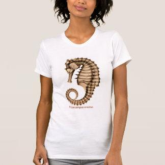 X-Ray Sea horse Hippocampus erectus Full Front T-Shirt