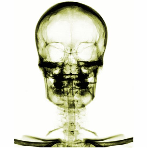 X-RAY VISION SKELETON SKULL - YELLOW PHOTO CUT OUTS
