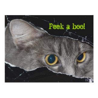 Xena peek-a-boo Postcard - Customized
