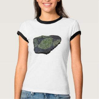 Xenolith Warrior Petrologist! Women's T T-Shirt