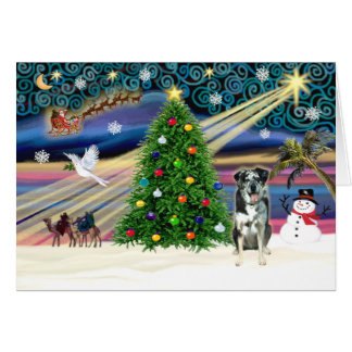 Xmas Magic-Catahoula Leopard Dog Card