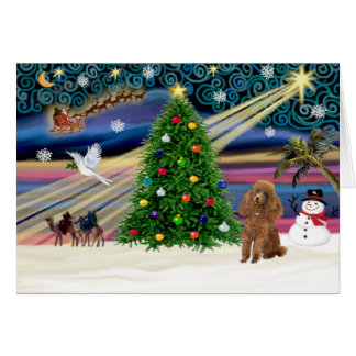 Xmas Magic-Poodle-Toy-Apricot Card