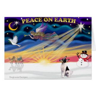 Xmas Sunrise - Toy Fox Terrier Card