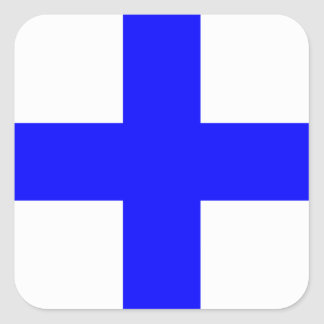 XRAY BLUE CROSS SQUARE STICKER