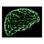 XRAY BRAIN SIDE VIEW GREEN POSTER