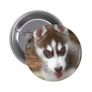 XX- Cute Siberian Husky Puppy Dog 2 Inch Round Button