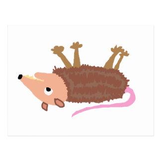XX- Funny Dead Possum Roadkill Cartoon Postcard