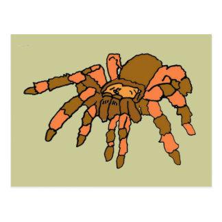 XX- Hilarious Tarantula Spider Postcard