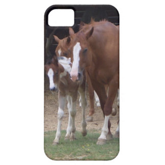 XX- Horse Photography Art Design iPhone 5 Cover