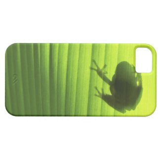 Yachiyo, Chiba Prefecture, Japan 2 iPhone 5 Covers