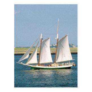 Yacht in Boston Harbour Postcard