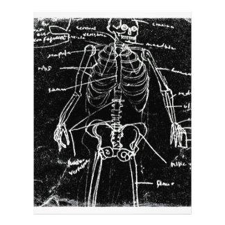 yaie tokyo human skeleton anatomy letterhead
