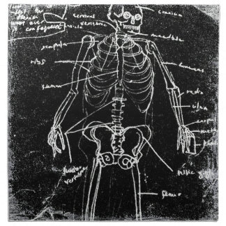 yaie tokyo human skeleton anatomy napkin