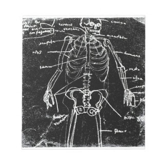yaie tokyo human skeleton anatomy notepad