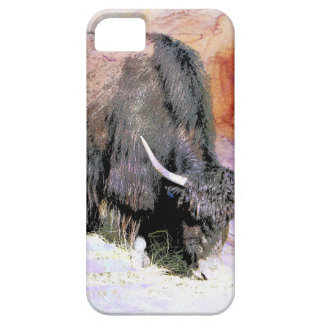 YAK iPhone 5 CASE