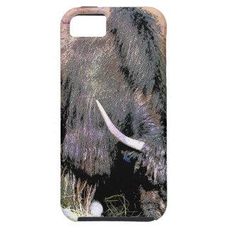 YAK iPhone 5 CASES