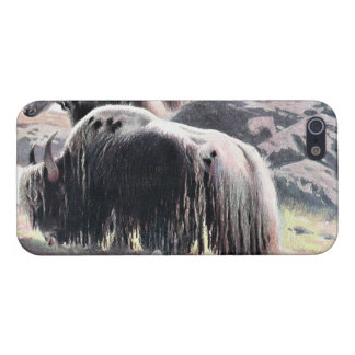 Yaks Vintage Painting iPhone 5 Cover
