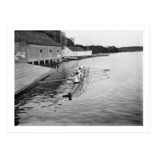 Yale University Rowing Crew Team Photograph Postcard