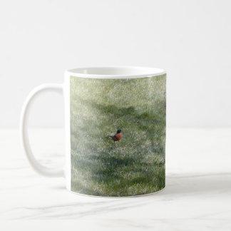 Yard Robin mug