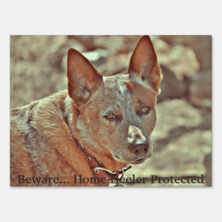 Yard Sign - Beware of Heeler