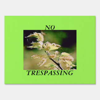 YARD SIGN - NO TRESPASSING