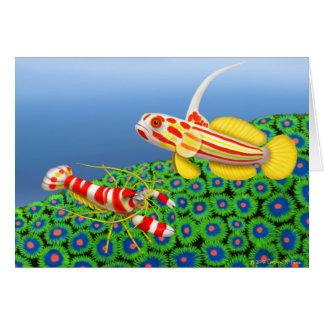 Yasha Hase Goby & Pistol Shrimp Card