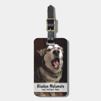 Yawning Alaskan Malamute Photograph Bag Tag