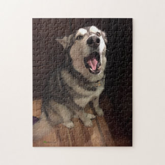 Yawning Alaskan Malamute Photograph Jigsaw Puzzle