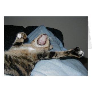 Yawning Kittie Card