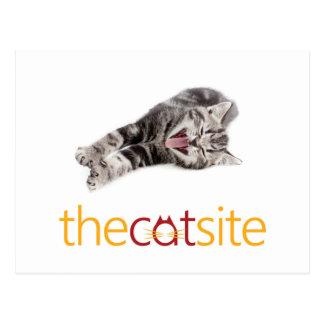 Yawning or Laughing cat Postcard