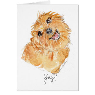 YAy! b'day card YDP Dog Thoughts