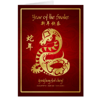 Year of the Snake 2013 - Happy Chinese New Year Greeting Card
