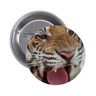 Year of the Tiger Round Pin