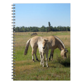 Yearling Notebook