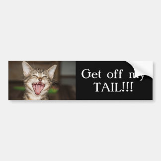 Yelling Cat Bumper Sticker