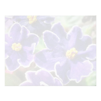 Yellow African Violet flowers Letterhead Template