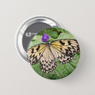 Yellow and Black Butterfly 2 Inch Round Button
