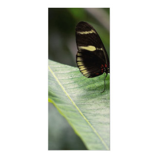 """Yellow And Black Butterfly 4"""" X 9.25"""" Invitation Card"""