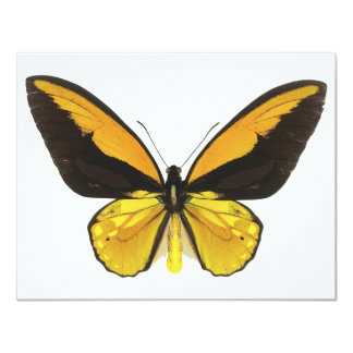 Yellow and Black Butterfly Personalized Invitations