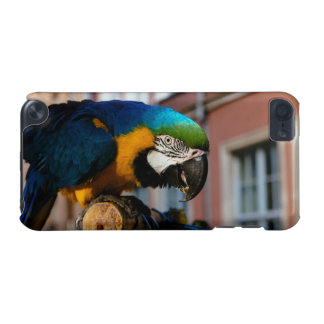 Yellow and Blue Macaw Parrot Bird Animal iPod Touch 5G Covers