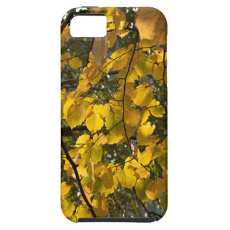 Yellow and green autumn leaves case for the iPhone 5