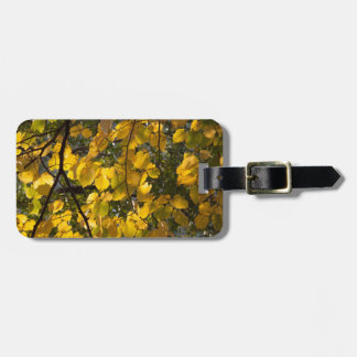 Yellow and green autumn leaves luggage tag