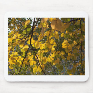 Yellow and green autumn leaves mouse pad