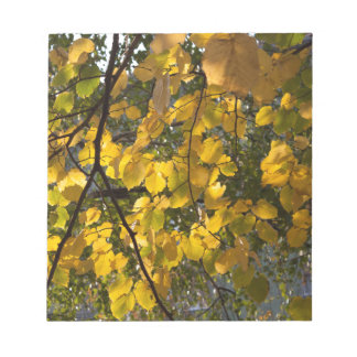 Yellow and green autumn leaves notepad